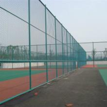 供应体育围网 网球场围网 羽毛球场围网 足球场围网 护栏网 勾花网