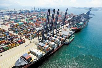 供应上海代理木材进口报关图片