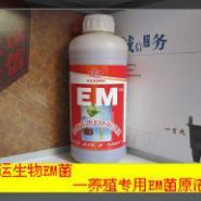 养殖专用EM益生菌菌液图片