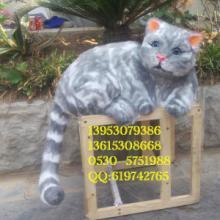 供应卡通猫