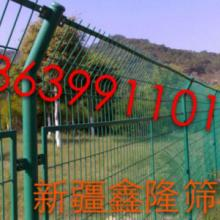 供应新疆护栏网的价格