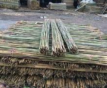 供应2.2m菜架竹