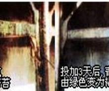 供应LYWS固体氯杀菌灭藻剂图片