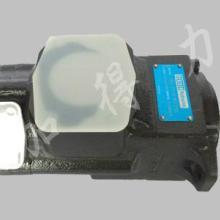 供应T6CC-028-012-1R00-C100油泵含义