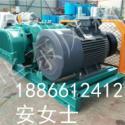 HDSR200洗煤用罗茨风机全网最低价图片