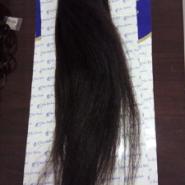 假发獬图片