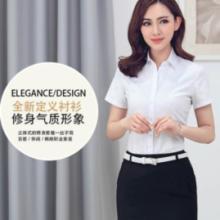 供应定制2015夏短袖白色衬衫职业OL通勤