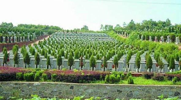 供应风水园公墓陵园,霸州风水园公墓陵园