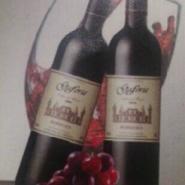 加弗利葡萄酒2006图片
